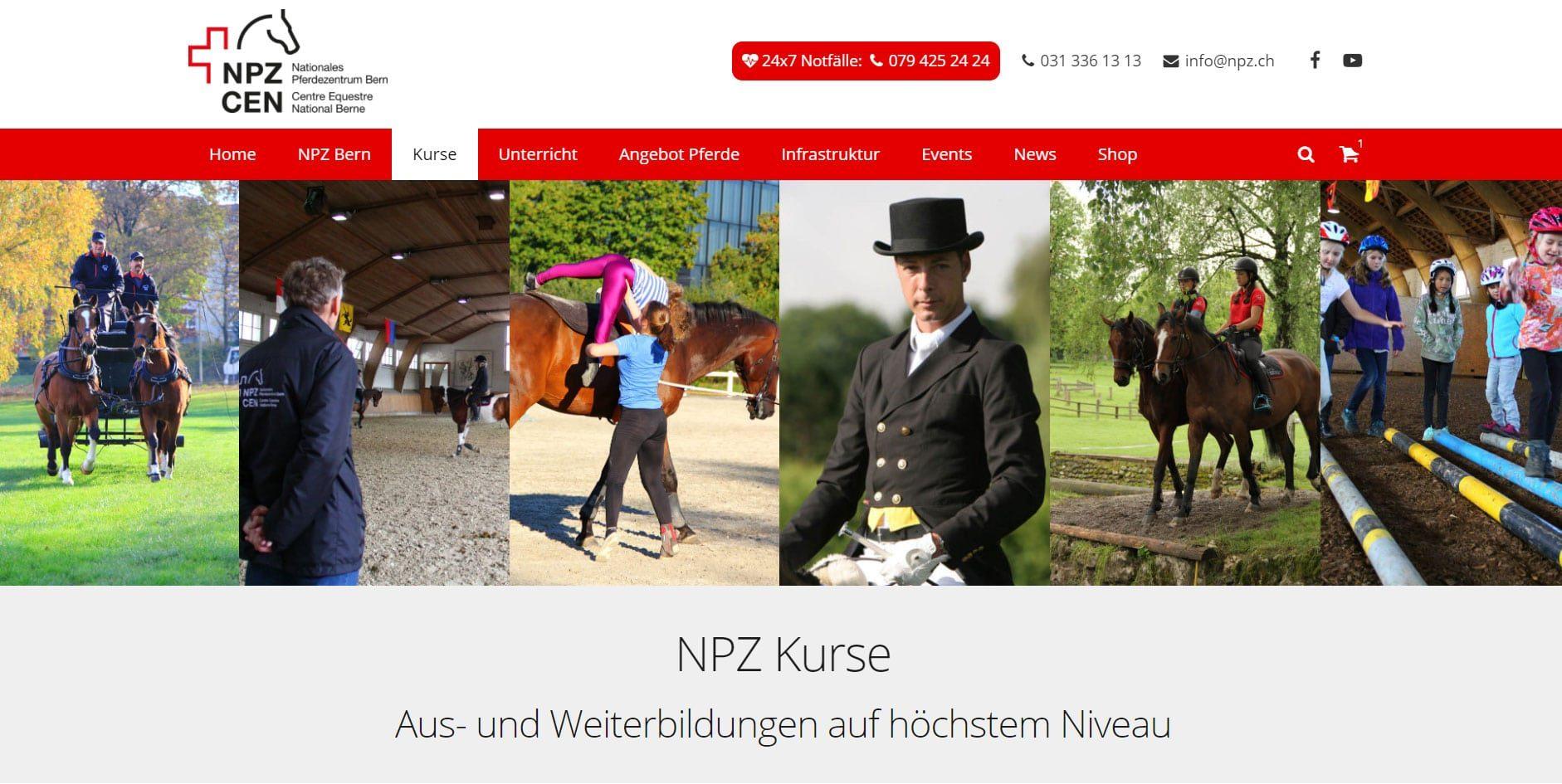 npz.web-screenshot